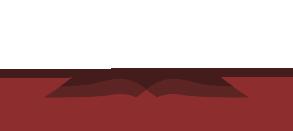 logo-north-carolina